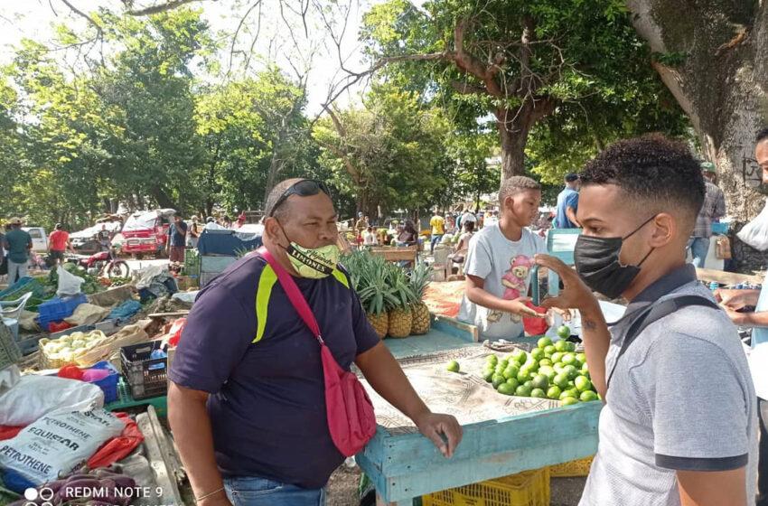 Trasladan Terrenos Improvisados 600 Vendedores Mercado Municipal