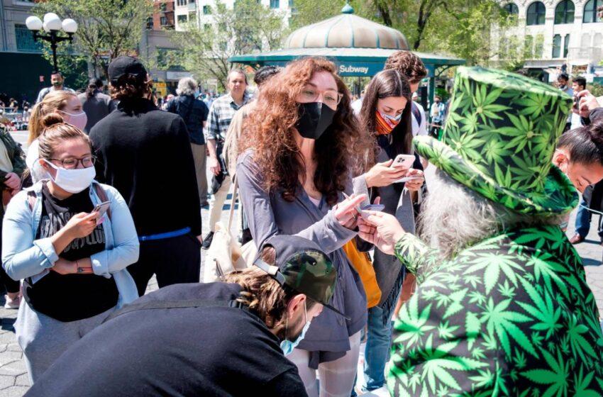 Regalan Marihuana Vacunados COVID-19 Área New York, Estados Unidos